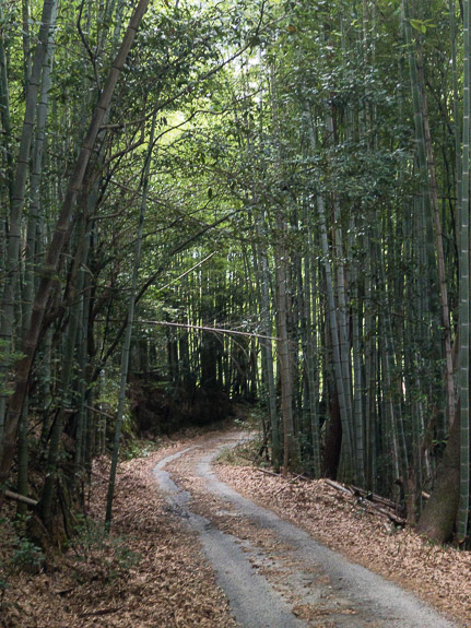 Side Road Explored on a Whim steep but pretty -- Kyoto, Japan -- Copyright 2017 Jeffrey Friedl, http://regex.info/blog/