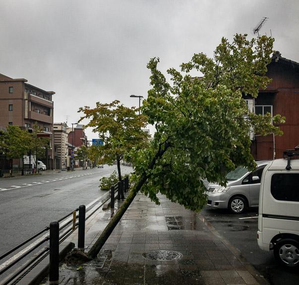 On Sanjo Street -- 堀池橋 -- Kyoto, Japan -- Copyright 2018 Jeffrey Friedl, http://regex.info/blog/