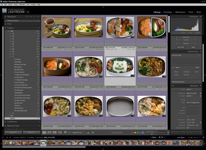 "Adobe Lightroom Version 1.0, ""Library Grid View"" (click image for full-resolution screenshot)"