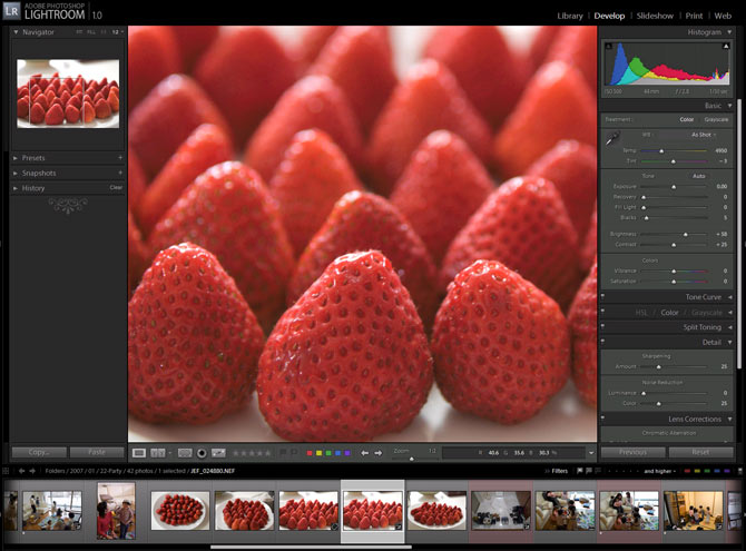 Adobe Lightroom 1.0, Develop Module in Action