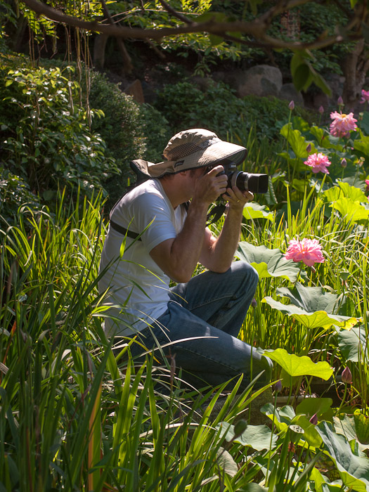 Me Among the Lotus Flowers photo by Nicolas Joannin  --  Kajuuji Temple (勧修寺)  --  Kyoto, Japan  --  Copyright 2012 Nicolas Joannin, https://plus.google.com/u/0/116578079434506112628
