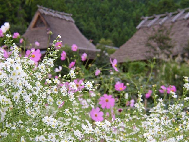 1 / 160 sec, f/4.4, ISO 60 — full exif Village -- Copyright 2006 Katsunori Shimada, http://regex.info/blog/