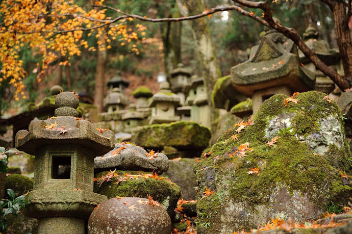 n1392() -- Nishimura Stone Lanterns -- Kyoto, Japan -- Copyright 2009 Paul Barr