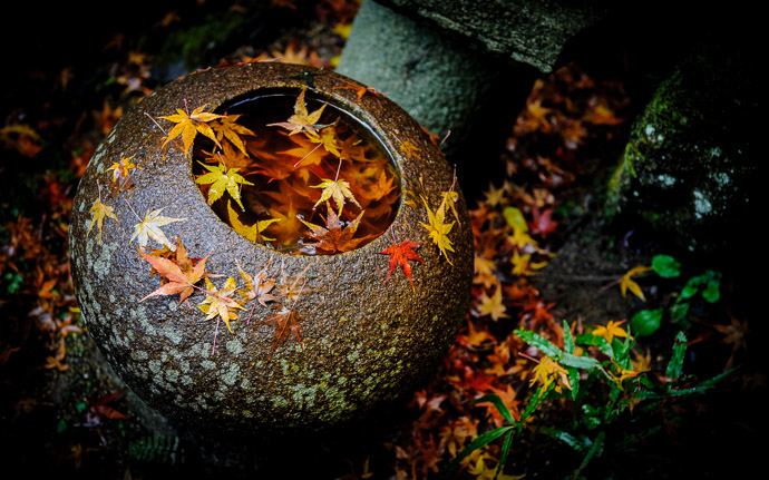 desktop background image of a stone basin at the Nishimura Stone Lanterns garden, Kyoto Japan  --  at Nishimura Stone Lanterns photo by Paul Barr  --  Copyright 2009 Paul Barr