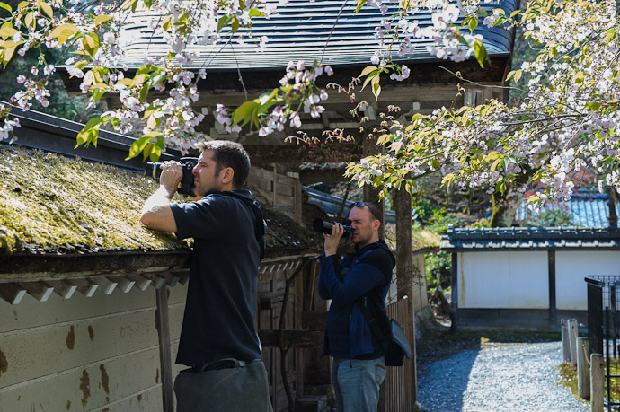 Moss Macro Photography with Nicolas Joannin at the Joushoukou-ji Temple (常照皇寺) in the mountains of northwest Kyoto, Japan photo by Paul Barr  --  Joushoukou-ji Temple (常照皇寺)  --  Copyright 2012 Paul Barr