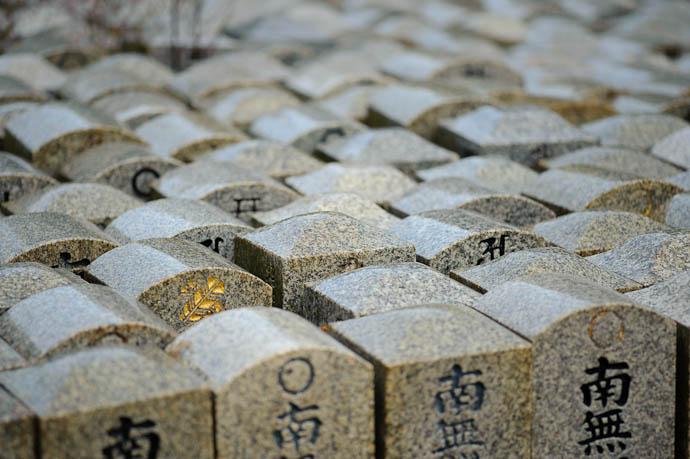 Gold Bug? -- Japan -- Copyright Jeffrey Friedl, http://regex.info/blog/