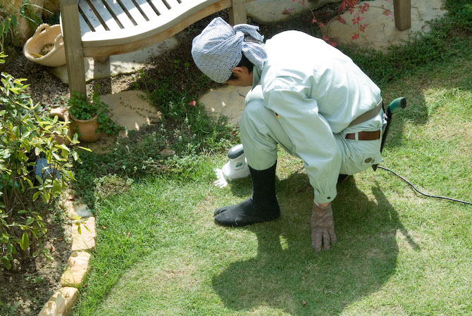 Japanese Lawn Mower -- Kyoto, Japan -- Copyright 2006 Jeffrey Eric Francis Friedl, http://regex.info/blog/
