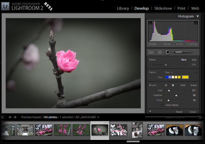Adobe Lightroom 2.0 beta Screenshot showing some new features in action (in this case, selective-area desaturation and a post-crop vignette)