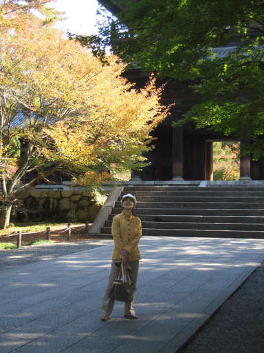 Fumie inspecting the foliage at the Nanzen Temple (Nanzenji) in Kyoto, Japan