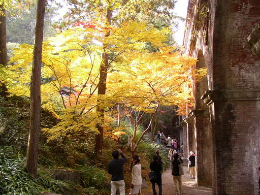 Fall foilage at the base of the aqueduct bridge in the Nanzen Temple grounds, Kyoto Japan