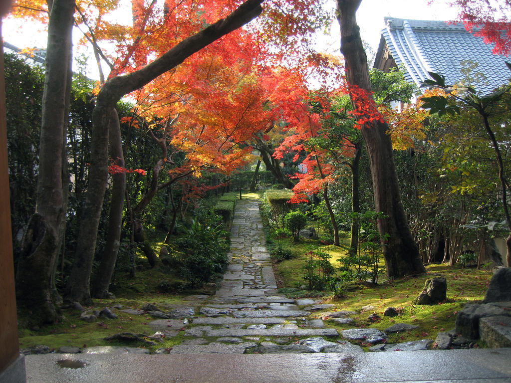 Fall Colors at the Ryouanji Temple, Kyoto Japan 龍安寺の紅葉、京都