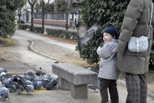 Anthony checking out the pidgins